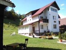 Accommodation Fundata, Vlăduț Guesthouse