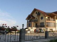 Panzió Sânnicolau de Beiuș, Neredy Panzió
