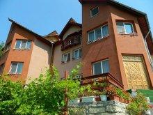 Cazare Satu Nou (Glodeanu-Siliștea), Pensiunea Casa Lorena