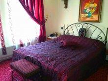 Accommodation Sibioara, Voila Hotel