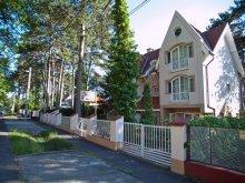 Vilă Kehidakustány, Villa Clara
