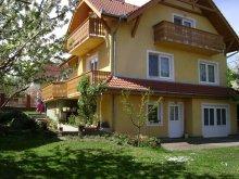 Apartament Badacsonytomaj, Apartament FO 1028