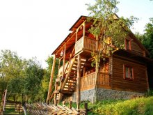 Accommodation Vadu Izei, La Gorgan Guesthouse