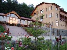 Accommodation Suplacu de Barcău, Randra Guesthouse