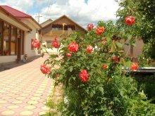 Accommodation Trestioara (Mânzălești), Speranța Vila
