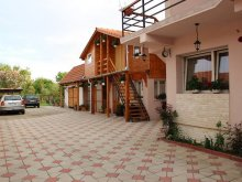 Accommodation Stejar, Diana Guesthouse
