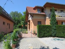 Cazare Balatonboglár, Vila Steiner - Apartament B