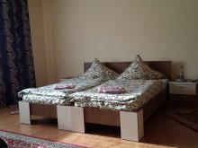 Pensiune județul Maramureş, Pensiunea Silvia