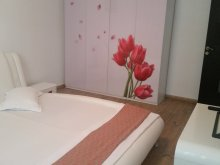 Szállás Lichitișeni, Luxury Apartman