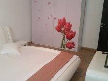 Szállás Mărgineni, Luxury Apartman