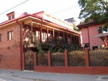 Accommodation Tulcea county, Pluto Guesthouse