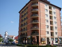 Apartament Pârvu Roșu, Apartament Felix