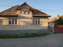Accommodation Mădăraș, Merlin Guesthouse