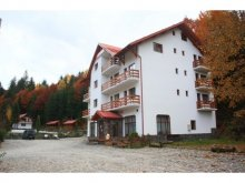 Accommodation Bistrița Bârgăului, Păltiniș Hotel