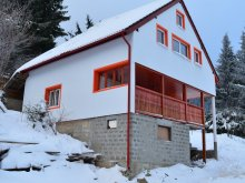 Villa Berzunți, Orange House