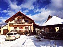 Accommodation Spermezeu, Maramureș Guesthouse