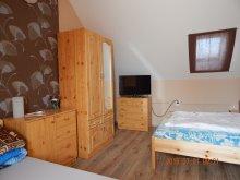 Accommodation Abádszalók, Darwin Classic Apartment