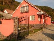Accommodation Bărcuț, Julia Guesthouse