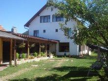 Bed & breakfast Rucăr, Adela Guesthouse