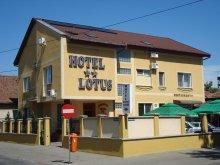 Accommodation Sintea Mică, Lotus Hotel