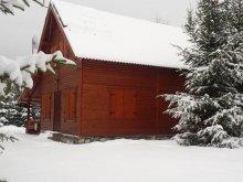 Vacation home Bistrița Bârgăului Fabrici, Loki Guesthouse