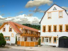 Accommodation Saschiz, Joker B&B