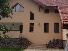 Villa Ágas (Agăș), Casa de la Munte Villa