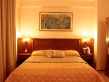 Cazare Homorog, Hotel Maxim