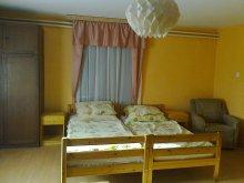 Apartament Mezőtúr, Casa de oaspeți Véndiófa 1