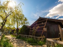 Bed & breakfast Agaua, Cristian Guesthouse