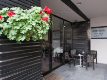 Hotel Glodeanu-Siliștea, Hemingway Residence