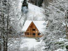 Bed & breakfast Peste Valea Bistrii, Larix Guesthouse
