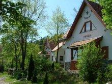 Panzió Borsod-Abaúj-Zemplén megye, Szarvas Panzió