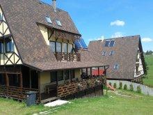 Panzió Magyarbikal (Bicălatu), Vals Villa