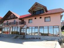 Accommodation Huzărești, Brădet Guesthouse