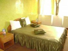 Accommodation Baia Sprie, Casa Rosa