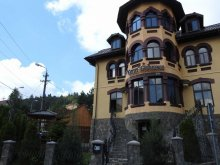 Accommodation Pârâul Rece, Casa Dunărea Guesthouse