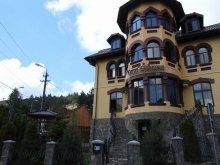 Pensiune Chirlești, Pensiunea Casa Dunărea