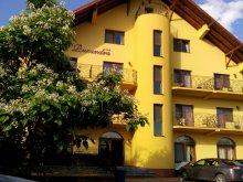 Accommodation Valea Mare de Codru, Ruxandra Guesthouse