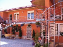 Accommodation Cârnecea, Maria Guesthouse
