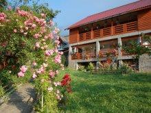 Bed & breakfast Burluși, Poiana Soarelui Guesthouse