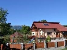 Bed & breakfast Lunca (Voinești), Arnota Guesthouse