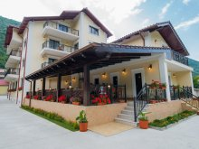 Bed & breakfast Milcoveni, Noblesse Guesthouse