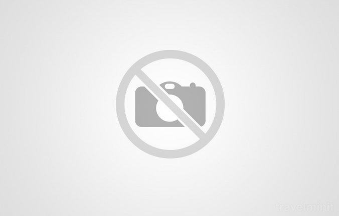 Salty water pool Praid
