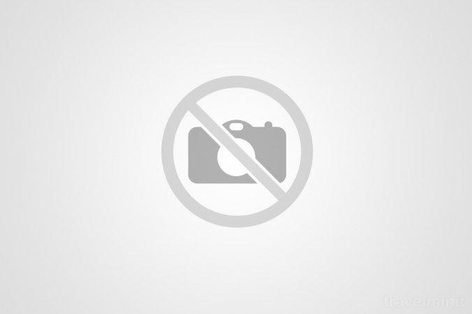 Castelul Hunedoarei